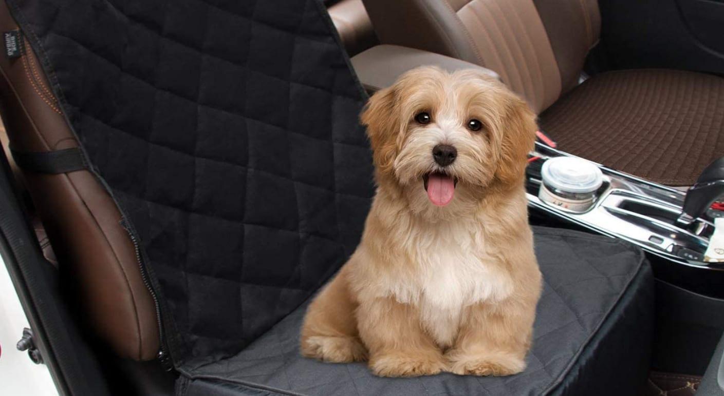 Comparatif pour choisir le meilleur siège auto pour chien